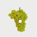 Znojemské historické vinobraní icon