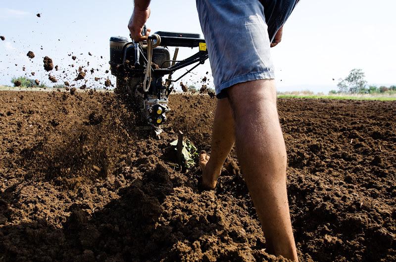 Agricoltori calabri in azione di giuseppe_bagnato