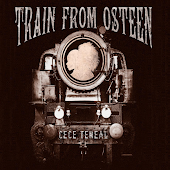 Train from Osteen
