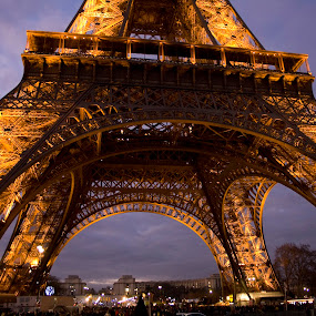 Majestic by Victor Mukherjee - Landscapes Travel ( lights, paris, landmark, famous, tower, europe, eiffel, france, historical, architecture, evening )