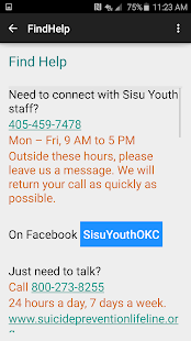 Sisu Youth- screenshot thumbnail