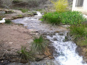 Photo: Arroyo de Mesones