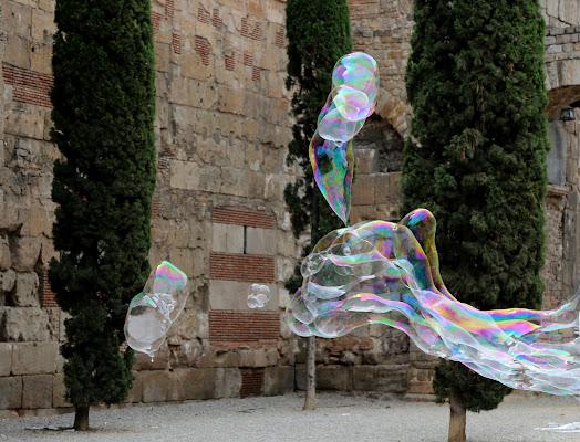 Bolle e cipressi a Barcellona di Dama