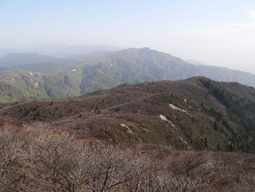 国見岳からヤシオ尾根を望む