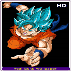 The Best Goku Wallpaper HD APK 1 0 pour Android