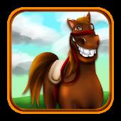 Konie w Konny Konkursie