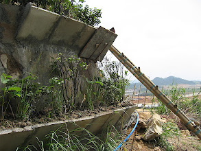Photo: CHN-QU11  Extreme revegetation with vetiver - Guangdong China.  Artificial terraces have been slotted into quarry face and planted with vetiver and other shrubs