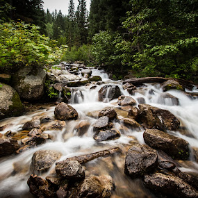 Mountain Stream by Dallas Golden - Landscapes Waterscapes ( water, mountains, stream, long exposure, river )