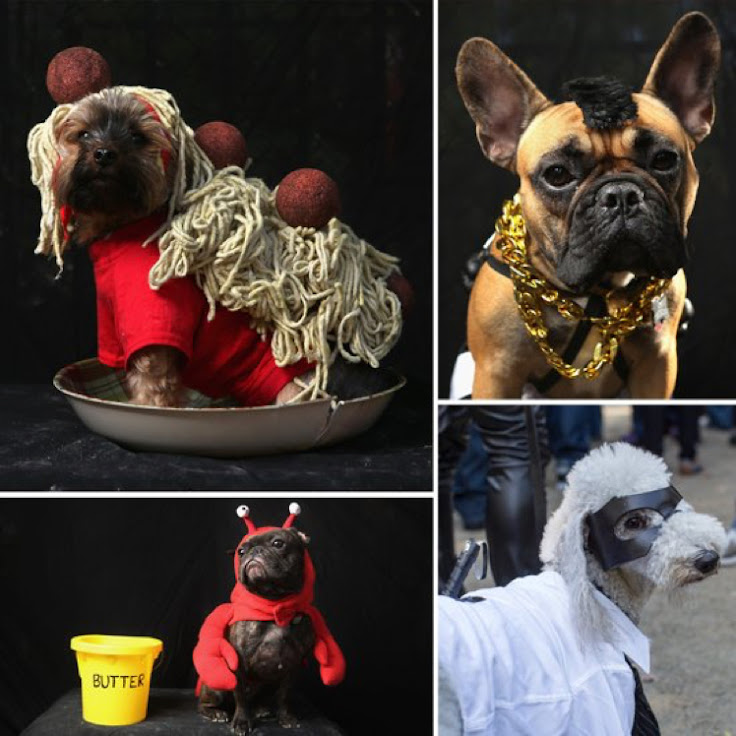 Photo credit: PopSugar