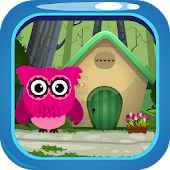 Pink Owl Rescue Game-175