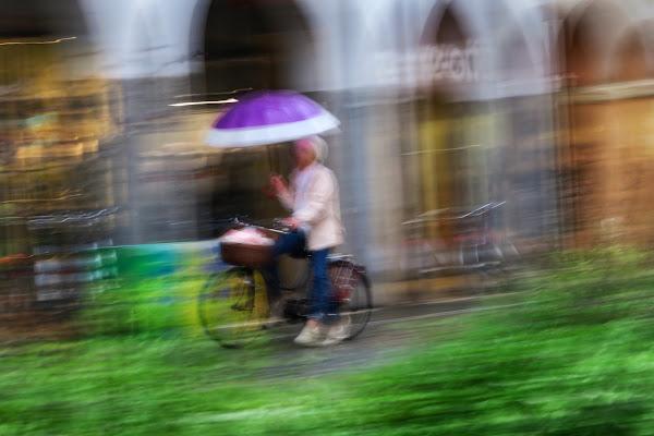 Pioggia di mirco_gavioli