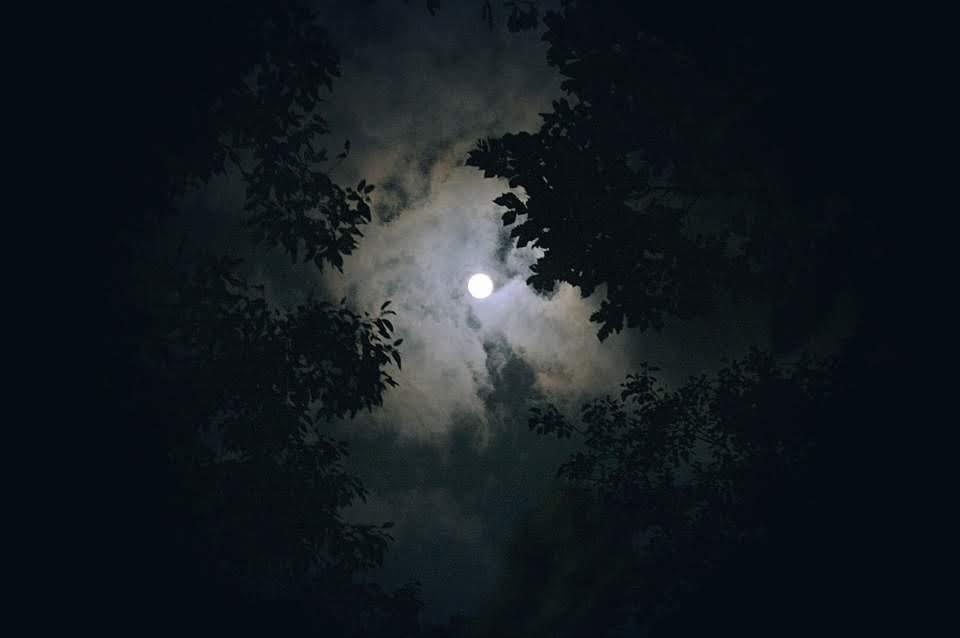 달 그리고 그대