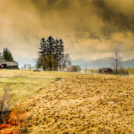 In the mountains by Panait Sorin - Landscapes Mountains & Hills ( canon, hills, mountains, house, dambovicioara )