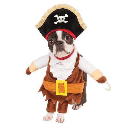 Hunddräkt, Pirat S