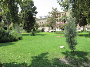 Photo: Day 138 -  The Grounds in Golestan Palace Complex, Tehran