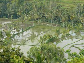 Photo: 19. Bali Island.