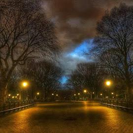 Central Park at Dusk  by Winnie Basso - City,  Street & Park  City Parks