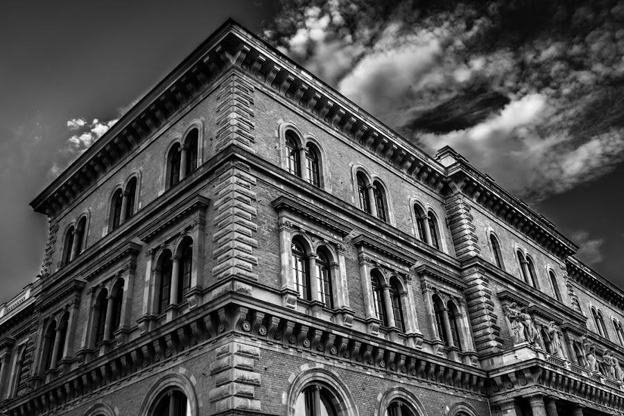 Corvinus University of Budapest by Gábor Tamasi - Black & White Buildings & Architecture ( old, building, university, budapest, black and white, corvinus, architecture, city )