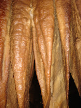 Photo: creepy looking stalactites