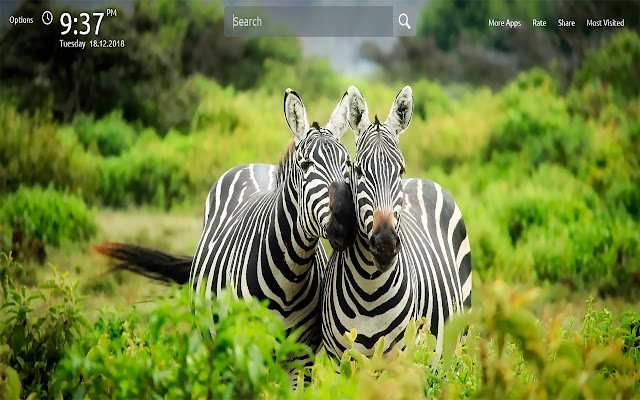 Wild Animals New Tab Wallpapers