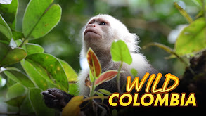 Wild Colombia thumbnail