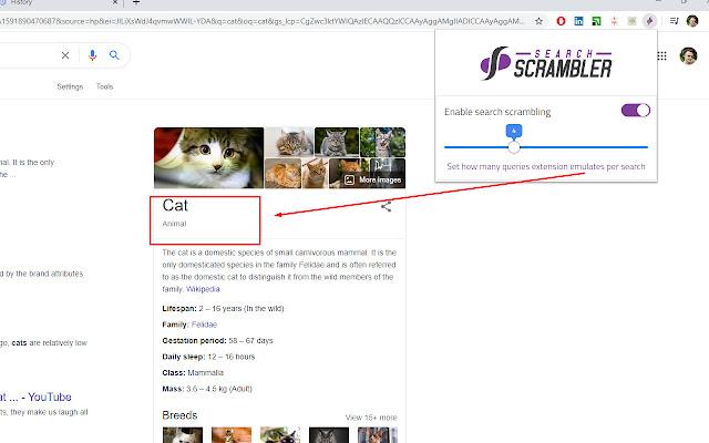 Search Scrambler