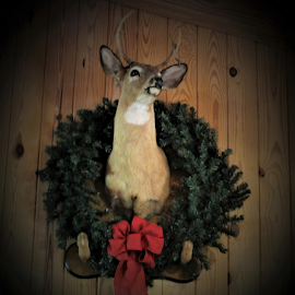 ZERO by Patti Westberry - Public Holidays Christmas ( deer, deer with wreath, christmas deer, christmas, mounted deer )