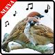 Tonos de pajaros para celular gratis, sonidos Download for PC Windows 10/8/7