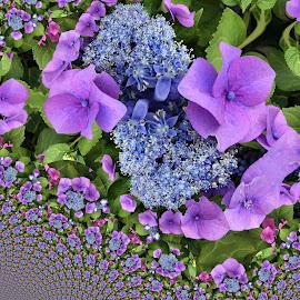 abstract flower by Paul Wante - Digital Art Abstract ( blue, abstract, phottography, flower, digital art )