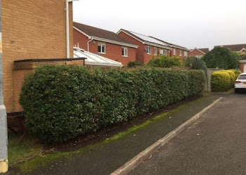 road hedge cutting services