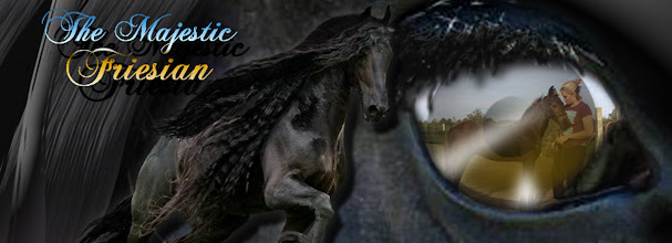 Photo: FROM THE EYE OF THE FRESIAN, FACEBOOK BANNER