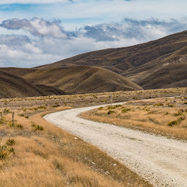 travelling the backroads by Perla Tortosa - Landscapes Travel ( mountains, 4wd, tussocks, roads, new zealand, country )