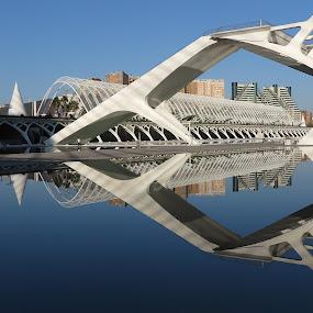 Calatrava buildings, Valencia by Luis Felipe Moreno Vázquez - City,  Street & Park  Street Scenes ( water, buildings, reflections, architecture, spain, calatrava )