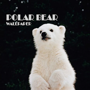 Polar Bear Animal Wallpaper 2 4 1 Android Apps Requirements