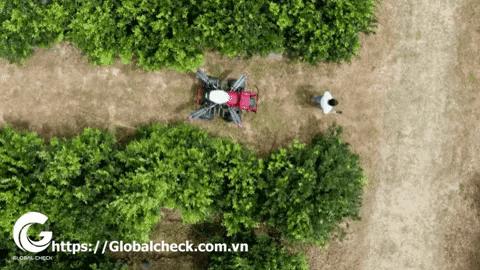 Xe phun thuốc trừ sâu không người lái