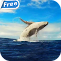 Whale HD Video Live Wallpaper APK
