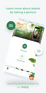 LeafSnap – Plant Identification 2