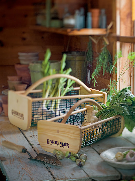 My Top 10 Favorite Gifts for the Gardener!
