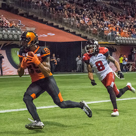 Running For Touchdown by Garry Dosa - Sports & Fitness American and Canadian football ( sports, teams, players, cfl, black, football, people, orange, running, red, white, indoors, stadium )