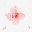 핑크 플라워(new) - 카카오톡 테마 icon