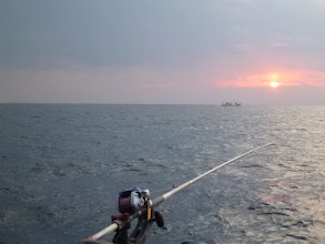 Photo: 漁師も引いてます。 ・・・青物か?