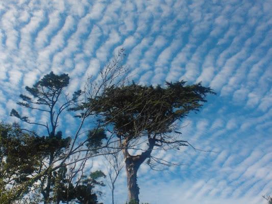 Stripes in the sky di Erader