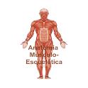 Atlas Músculo-esquelético icon