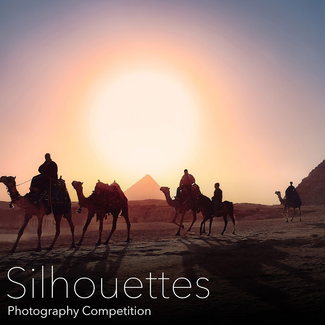 Silhouettes Photography Competition. Submit amazing Silhouettes photos and win amazing prizes