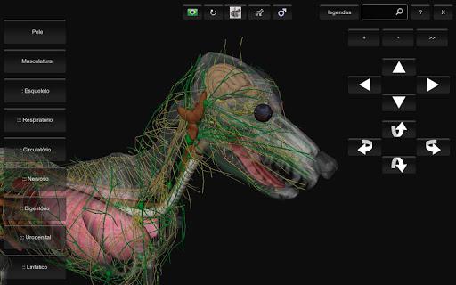 3D Dog Anatomy APK download   APKPure.co