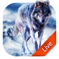 Download Ice Wolf Live Wallpaper Free
