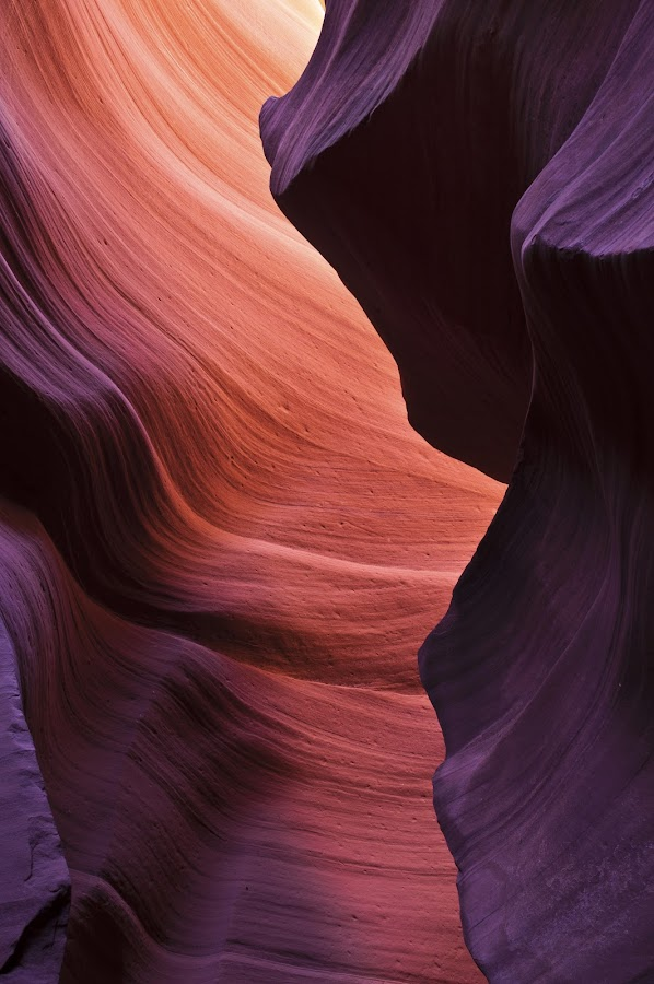 Canyon by Jeroen D'Haen - Travel Locations Landmarks ( america, color, canyon, rocks )