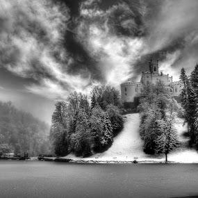 Castle  by Marin Mavra - Landscapes Weather ( winter, cold, majestic, snow, winterscape, snowy, trees, frozen lake, lake, castle,  )