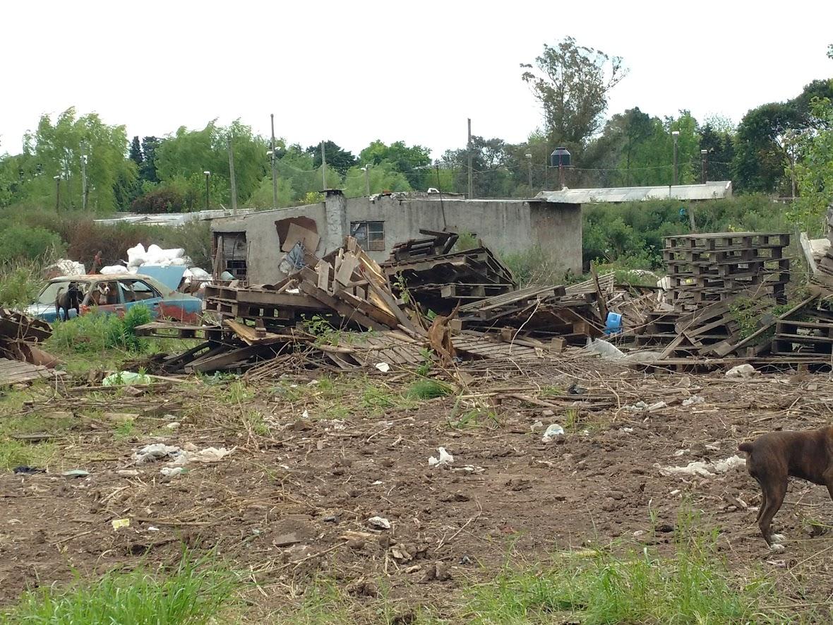 La casa de Cheong estuvo cerca de ser demolida, según Cheong, cuando las máquinas entraron a mover la tierra, avanzando en su proyecto. Los vecinos aseguran que el Municipio no cumplió con la promesa de que se iba a evitar el avance.