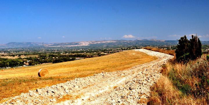 Farm Road di Luca Gallozza